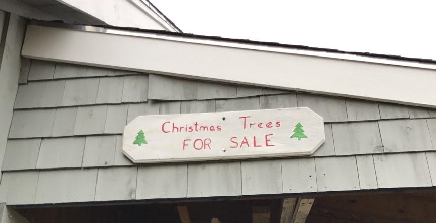 sign reading trees for sale